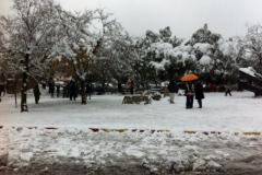 snow-jerusalem2