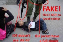 fake-2