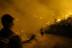 sahill_fire