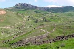 noah-ark-grass1